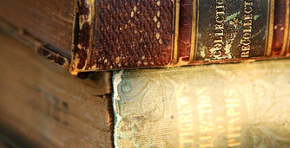 Sunlit Books